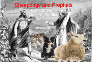 Sheepdogs and Prophets