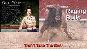False Flag and Raging Bulls